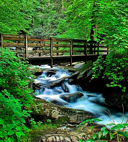 great-smoky-river